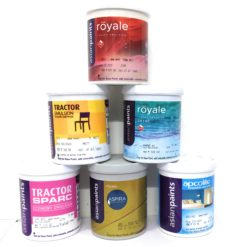 Wall paints interior